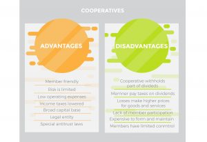 Cooperatives Advantages Disadvantages